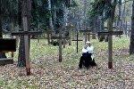 Дзяды - День поминовения предков в Беларуси