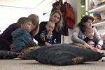 Мастер-класс для родителей: как привлечь детей к книгам