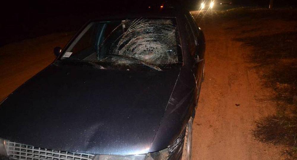 ВМотыкалах водителя, сбившего пешехода, ловили всей деревней