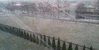 Снег у сакавіку ў Пінску