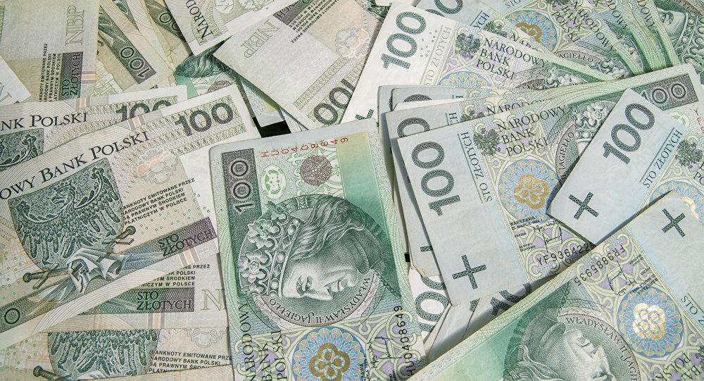 Вближайшие 10-20 лет небудем вводить евро— Вице-премьер Польши