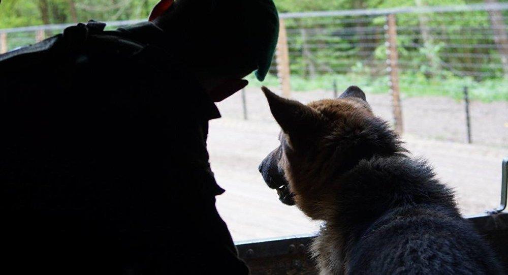 Пограничник со служебной собакой