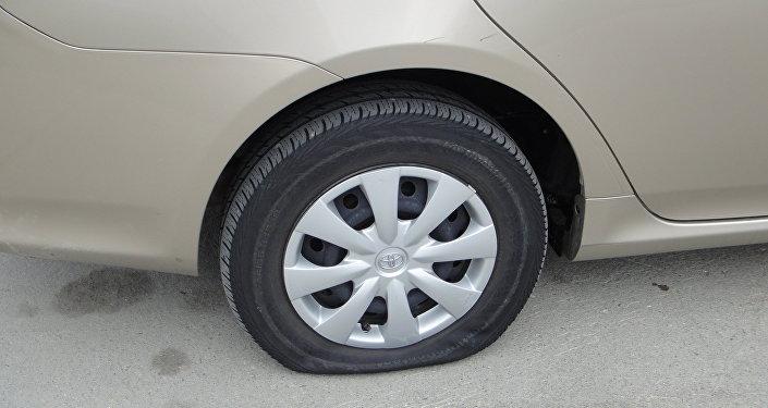 ВБобруйске безработный мужчина порезал колеса на20 автомобилях