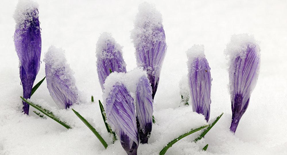 НаЮжном Урале предполагается мокрый снег исильный ветер