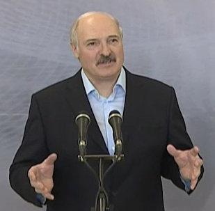 Александр Лукашенко дал совет дачникам, что выращивать на участках
