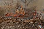 Пожар в Толочинском районе