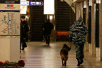 Полиция в метро Санкт-Петербурга