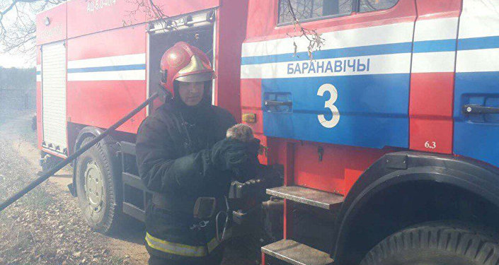 Пожарный с ежом