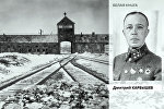 Белая книга — Дмитрий Карбышев