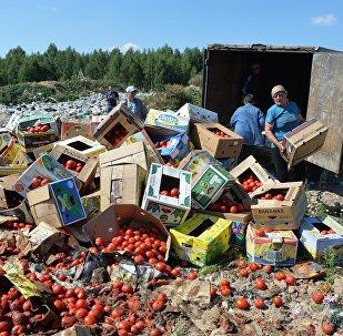 Санкционные помидоры