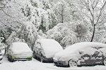 Апрельский Кишинев: видеокадры из-под снега