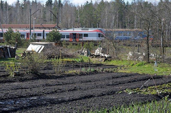 Дома и огороды некоторых жителей Крыжовки расположены прямо возле станции
