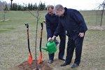 К 25-летию дипотношений Беларуси и Литвы стороны посадили яблоню