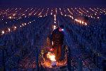 Виноградники Шабли, Франция