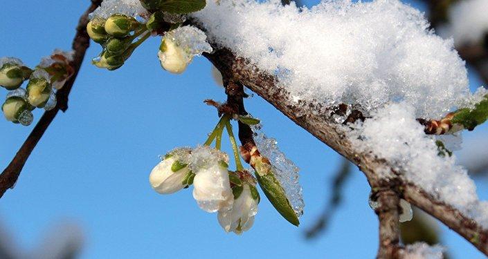 ВМинске отключают отопление, хотя 10мая будет снег