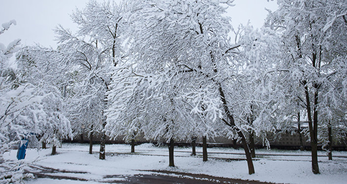 Снег у маі