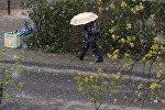 Снег в Минске в мае