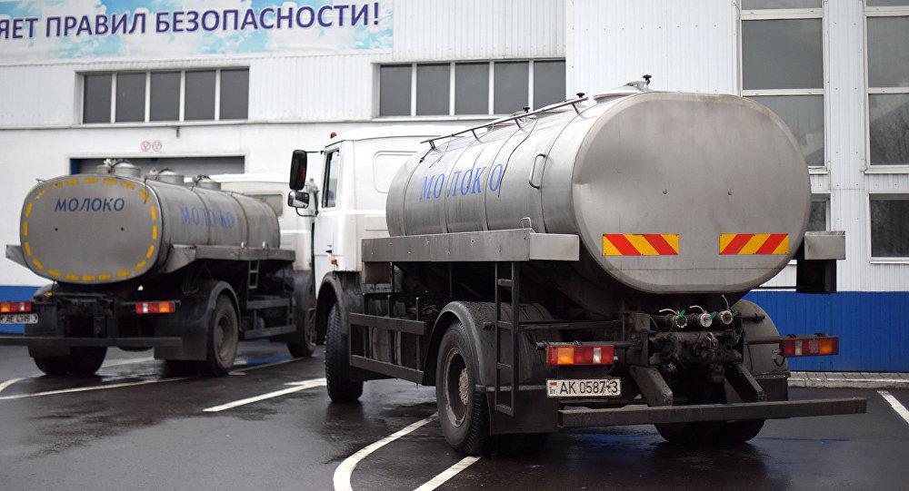 Молоковозы возле завода Милкавита
