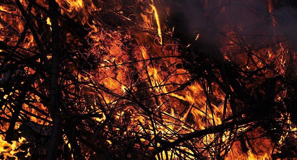 Напожаре вВерхнедвинском районе погибли 4 человека, втом числе ребенок