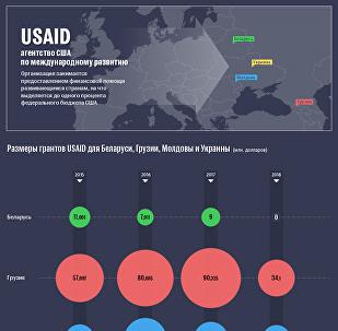 Гранты USAID постсоветским странам - инфографика sputnik.by