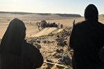В Египте расстреляли христиан-коптов
