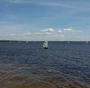 Белые паруса опять появились на Браславских озерах.