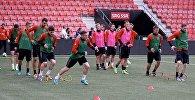 Национальная сборная Беларуси по футболу