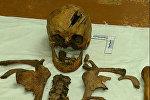 Найденные останки человека