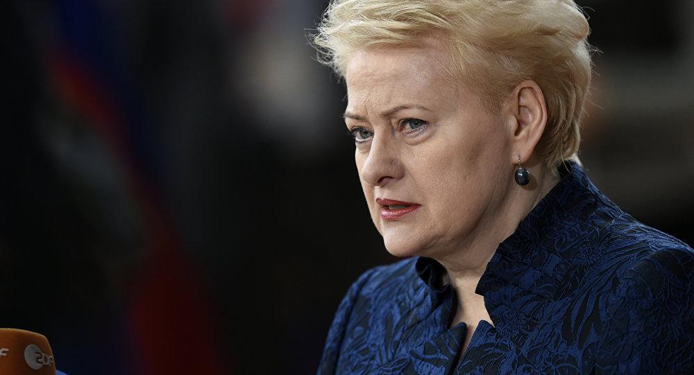 Президент Литвы назвала угрозой существование РФ и Беларуси