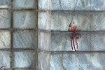 Кровь на стене здания парламента в Тегеране
