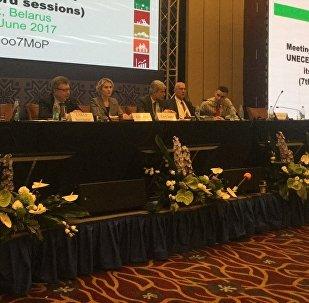 Совещание сторон Конференции Эспо в Минске