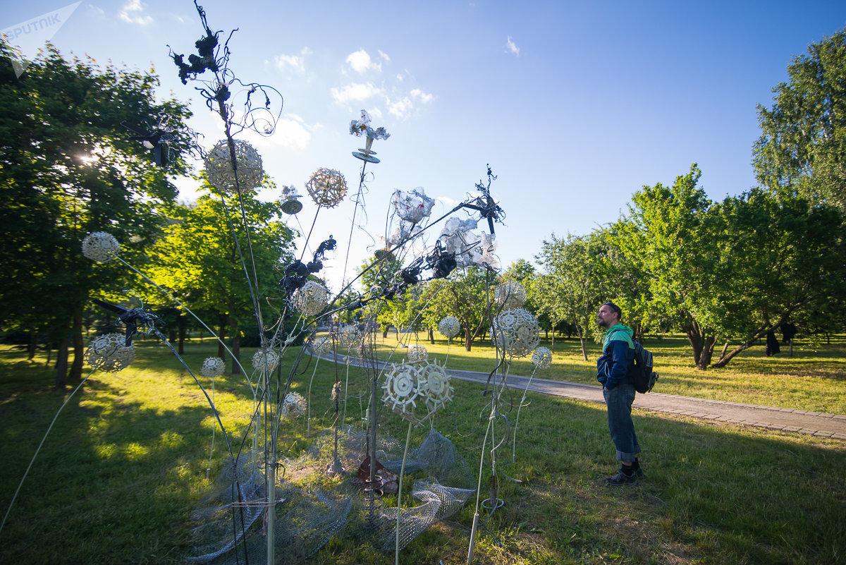 Татьяна Гомза создала пластическую эко-фантазию Клумба: среди трэш-антуража вырастают одуванчики и иная пластиковая растительность