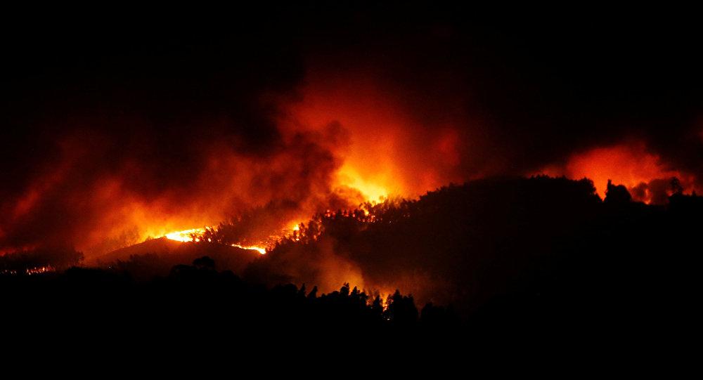 ВПортугалии вовремя лесных пожаров живьем сгорели 20 человек