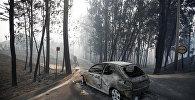 Автомобиль, сгоревший в результате лесного пожара в Португалии