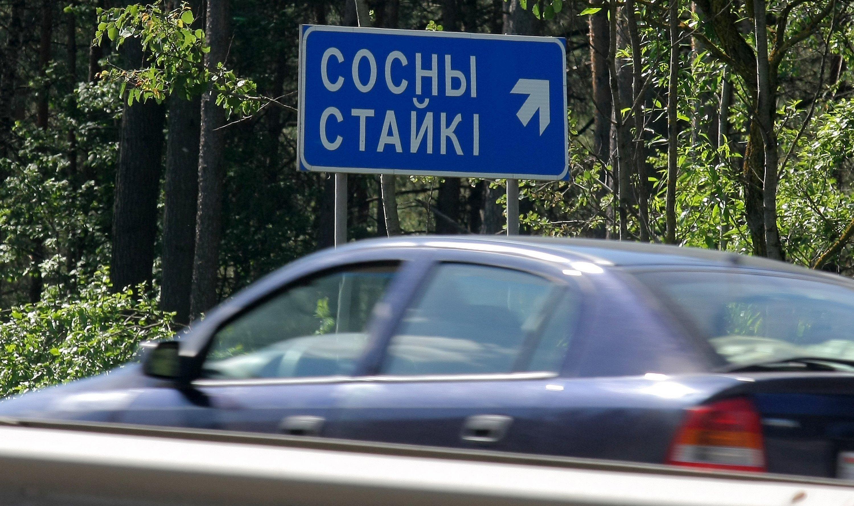 Сосны совсем недалеко от Минска - возможно, на экстремальные прыжки сюда приезжали жители столицы