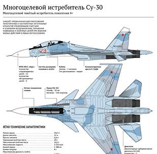 Многоцелевой истребитель Су-30 - инфографика на sputnik.by