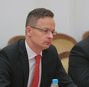 Министр иностранных дел и внешней торговли Венгрии Петер Сийярто