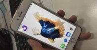 Смартфон с приложением Fabby