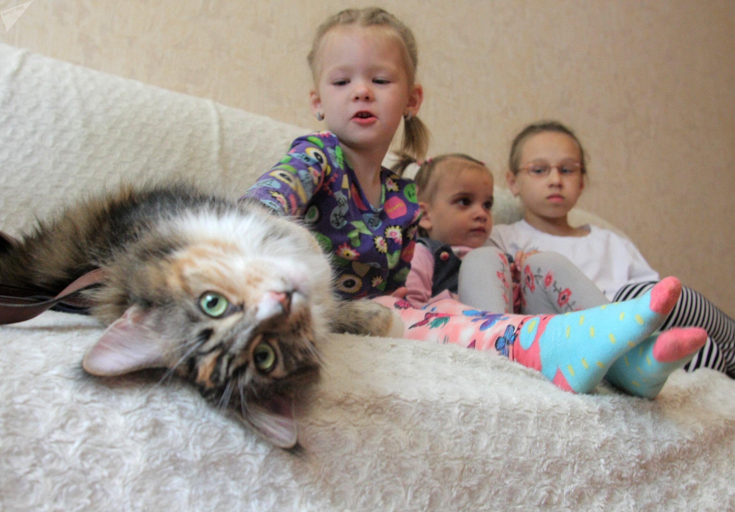 Те, кто знал Яну раньше, даже не верят, что за год ребенок мог так измениться - даже кошка Рысь доверяет ей, не ожидая подвоха, хотя первое время предпочитала обходить стороной