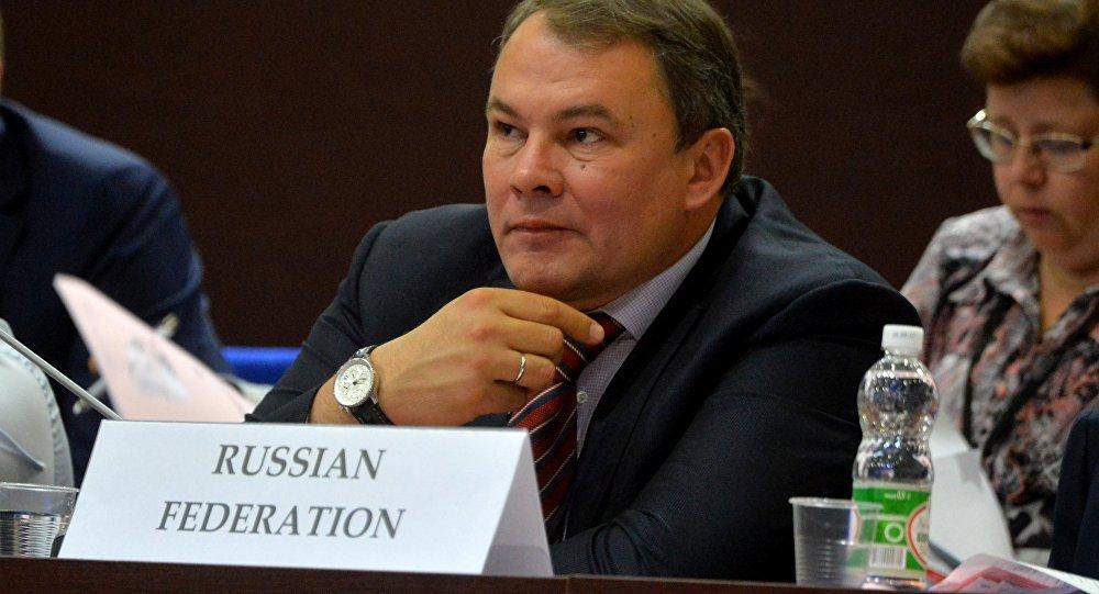Зампред Госдумы, глава российской делегации в ПА ОБСЕ Петр Толстой
