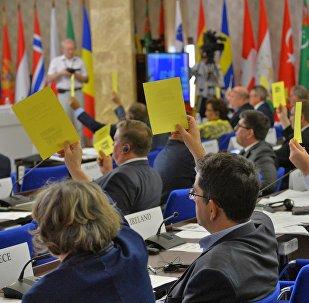 Голосование во время сессии ПА ОБСЕ в Минске