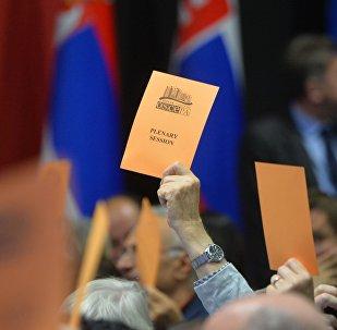 Голосование на сессии ПА ОБСЕ в Минске