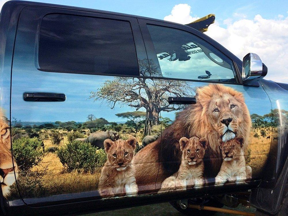 Лев и львята на дверках машины – почти как живые.
