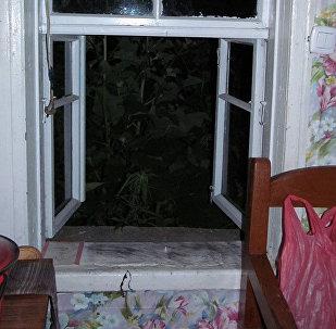 Окно в дачном доме