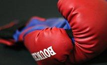 Боксерская перчатка, архивное фото