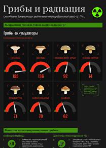 Грибы и радиация - инфографика на sputnik.by
