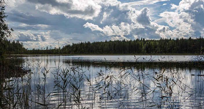 Озеро, архивное фото