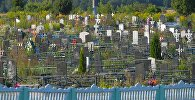 Телентеевское кладбище в Орше, где похоронили мальчика