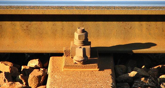 Тела 2-х молодых людей найдены около железной дороги вЖодино