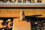 Рельсы железной дороги